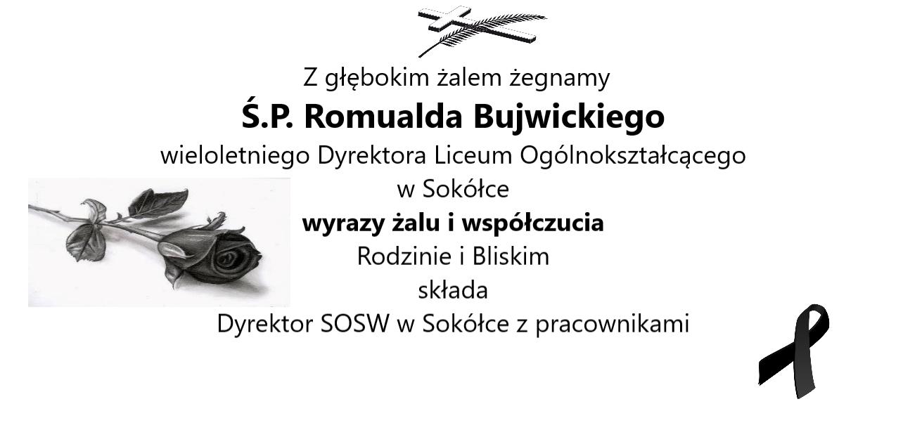 https://www.soswsokolka.pl/images/146483991_738826790404322_4628616298453056133_n.png